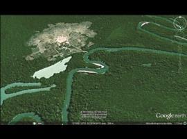 Pá de beiju –  pássaros – Xingu