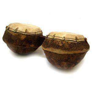 Bongô Sapô